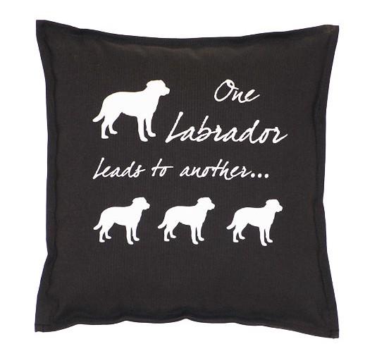 Labrador kudde